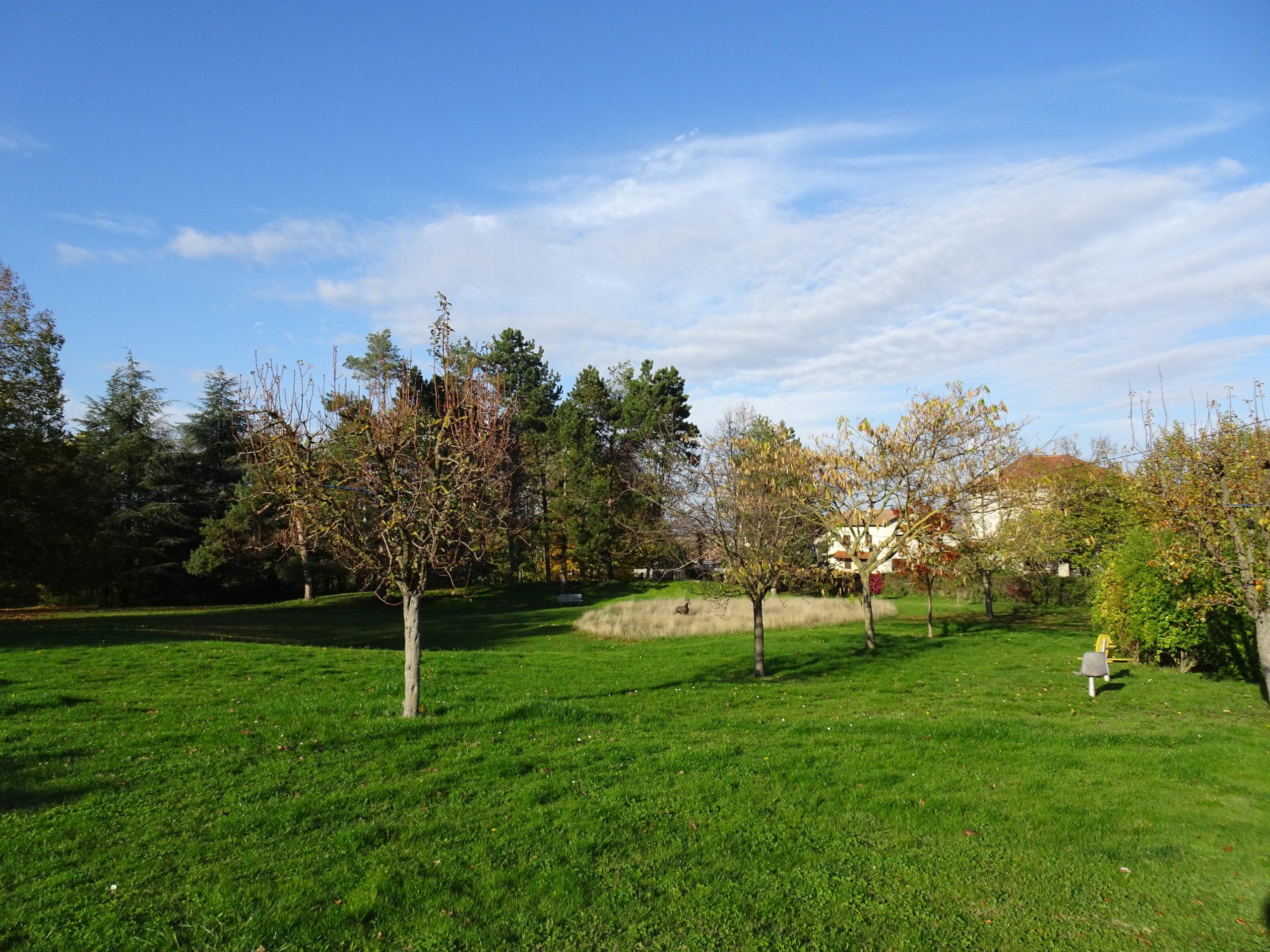 Parc arboré - Anneyron